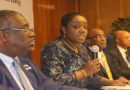 Economic Devt: Adeosun seeks more technical, institutional support for West Africa