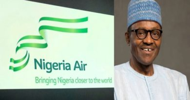 FG suspends planned national carrier