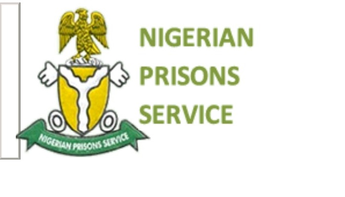 FEC approves purchase of firearms for Nigerian Prisons Service