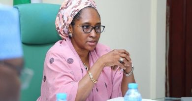Finance Minister explains how FG will fund 2021 Budget