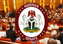 Economic diversification: Partner with private sector to promote investments, Senate tells FG